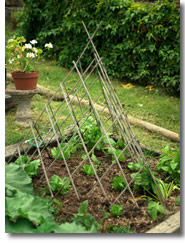 ornmental teepee trellis in a garden design