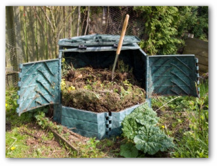 vegetable garden compost  bin