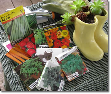 vegetable garden seed packets