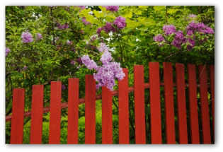 red painted wooden garden fence