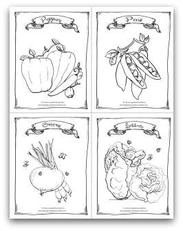 Peppers, Peas, Onions, Lettuce Printable Coloring Page