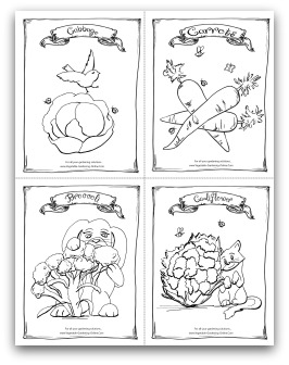 Cabbage, Carrot, Broccoli and Cauliflower Printable Coloring Page