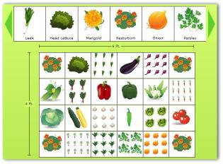 Sample Vegetable Garden Plan