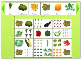 4x6 Sample Vegetable Garden Plan