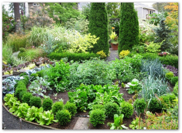 circular ornamental vegetable garden