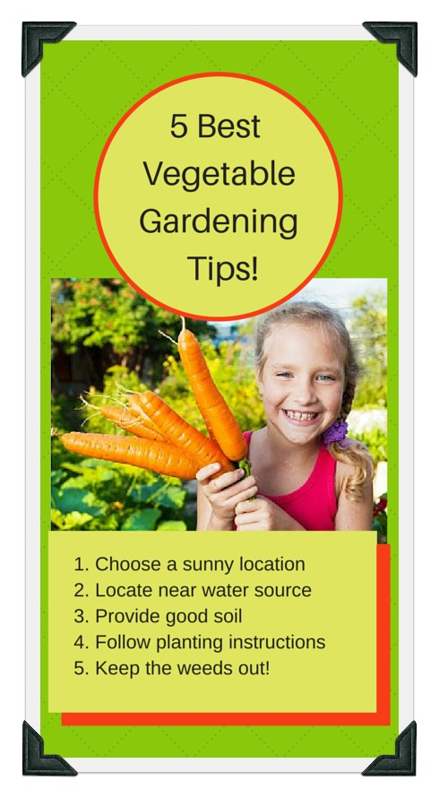 5 important vegetable gardening tips for success