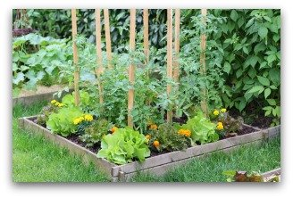 small vegetable garden ideas - Flower And Vegetable Garden Ideas