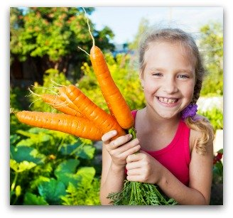 small vegetable garden plan with large carrots