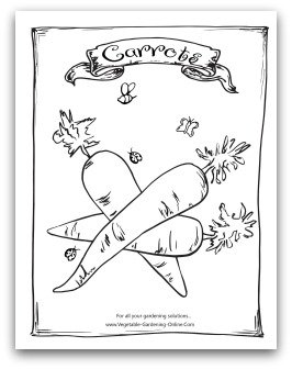 printable carrots coloring page