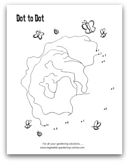 garden lettuce dot-to-dot printable