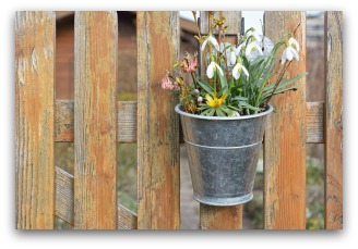 Cheap Garden Fences Can Be Attractive With Some Imagination