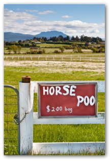 sign advertising horse manure for sale