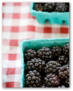 fresh blackberries in containers