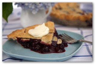 blueberry pie with whippped topping