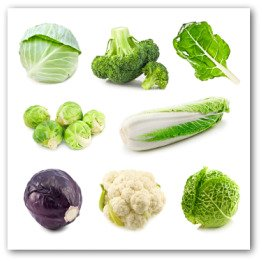 chart of brassica family of vegetables