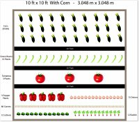 Free ten by ten garden plan including corn