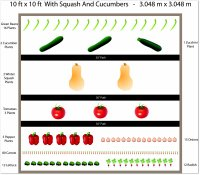 free ten by ten garden with squash and cucumbers