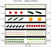 free 20 x 20 vegetable garden plan