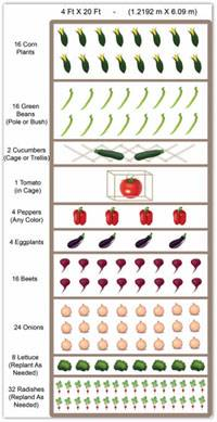 Merveilleux Raised Bed Vegetable Garden Plan