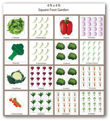 Sample Square Foot Vegetable Garden Plan