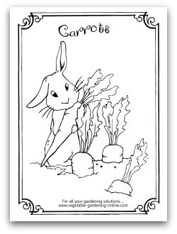 Carrot Coloring Page Printable