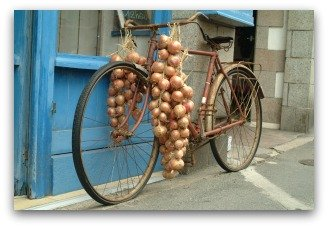 onion braids hanging from bicycle