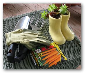 carrot seed packet, hand rake and trowel and gardening gloves