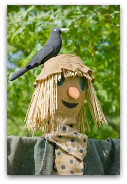Fun Scarecrow Ideas for Your Garden