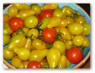 fresh ripe cherry and pear tomatoes