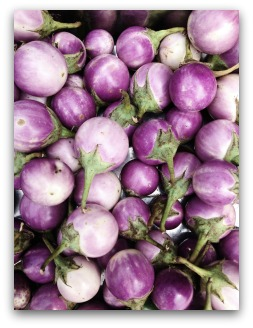 purple turnip variety