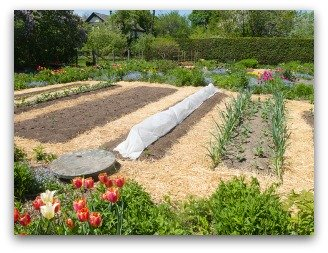 benefits of mulching a vegetable garden