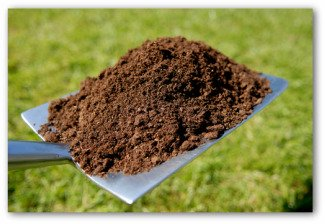 vegetable garden fertilizer