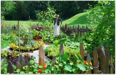 plan a vegetable garden that works for you