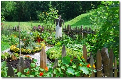 colorful vegetable garden in the country