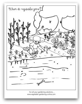 where do vegetables grow coloring page